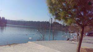 Lake Zbilje